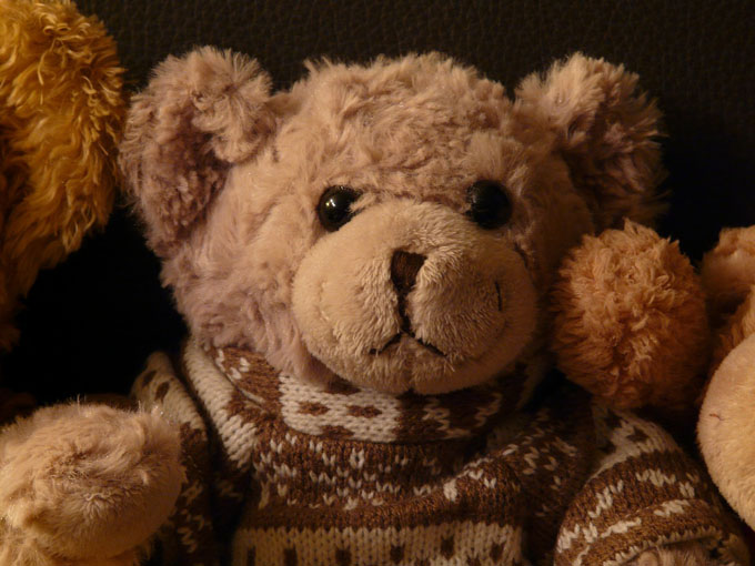 teddy-pullover-kuscheltier